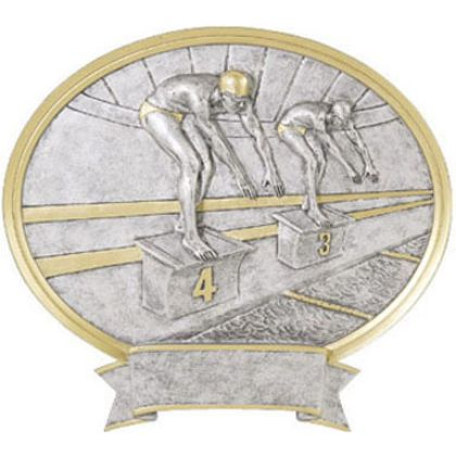 Swimming Male Award Sports Plaque Legend