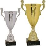 CMC860 Series Gold/Silver Trophy