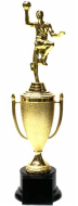 Basketball Cup Trophy