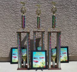 Florin Wrship Center Easter Car Show Trophies